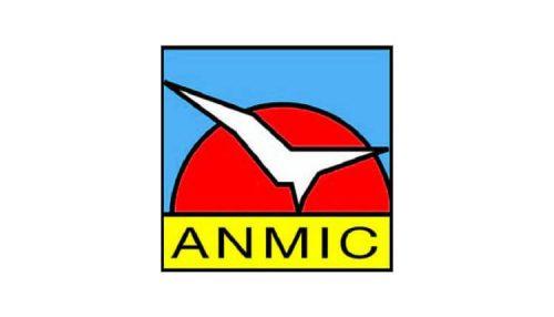 ANMIC-653387165